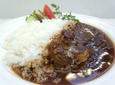 牛肉と玉ねぎのフォンドボー煮込み ビーフストロガノフ風